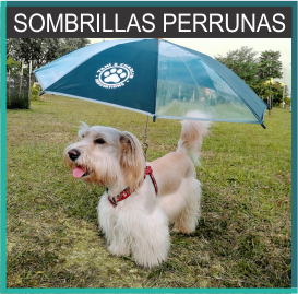 Sombrillas Perrunas